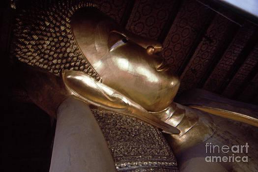 Bangkok Buddha Head by Scott Shaw
