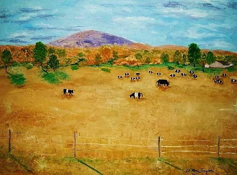 Jill Langdon Artwork For Sale Camden Me United States