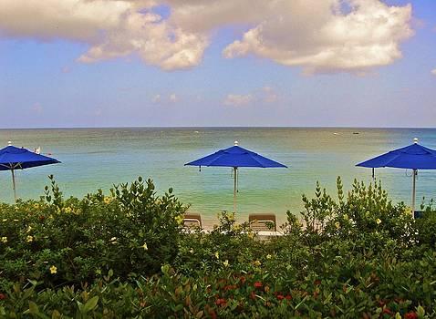 Jennifer Lamanca Kaufman - Barbados Ocean View