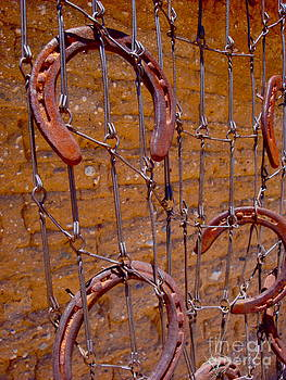 Barbed  by Cathy Dee Janes