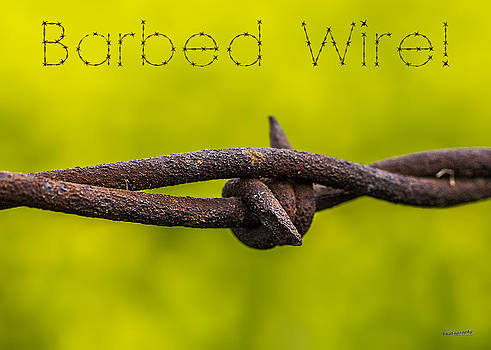 Barbed Wire by Jim Lucas