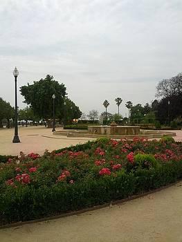 Shesh Tantry - Barcelona Gardens