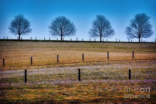 Bare Trees and Fence Posts by Henry Kowalski