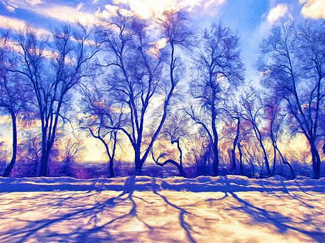 Dominic Piperata - Bare Trees