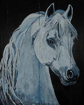Barn Ghost by Sandra Wilson