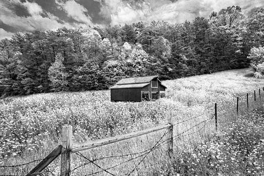 Debra and Dave Vanderlaan - Barn in the Meadow in Black and White