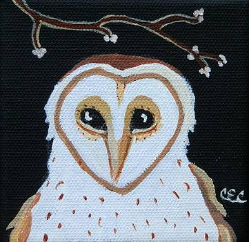 Barn Owl by Carolyn Cable