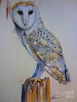 Barn Owl by Laurianna Taylor