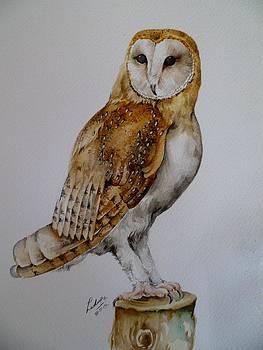 Barn Owl by Pradeepa Rupathilake