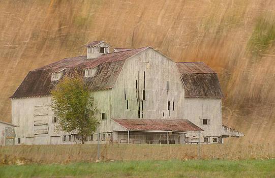 Randall Branham - Barn Photoart