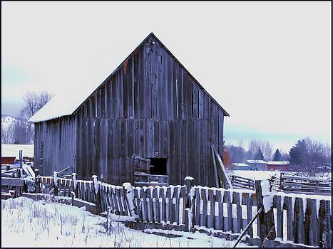 Kae Cheatham - Barn Standing Tall
