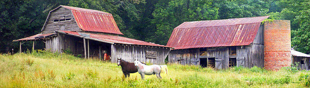 Barns and Horses near Mills River NC by Duane McCullough