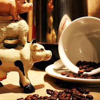 Barnyard Coffee by Shaileen Landsberg