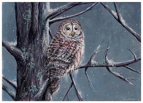 Barred Owl by Denise Armstrong