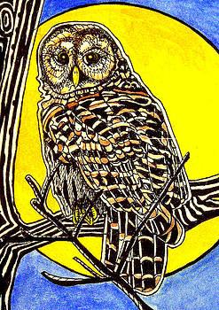 Barred Owl by Judy Moon
