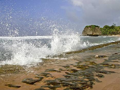Jennifer Lamanca Kaufman - Bathsheba Splash in Barbados