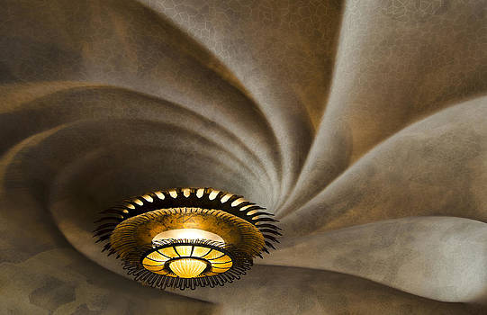 Batllo Ceiling by Jack Daulton