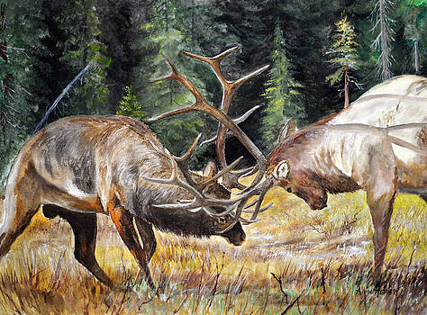 Battle - Elk by Alvin Hepler