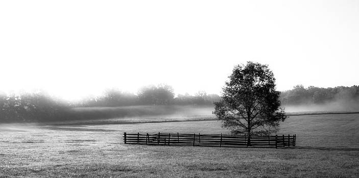 Battlefield Park  Princeton NJ by Theodore Lewis