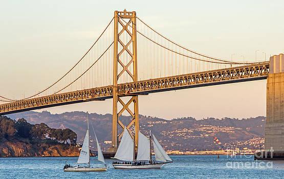 Kate Brown - Bay Bridge Gold
