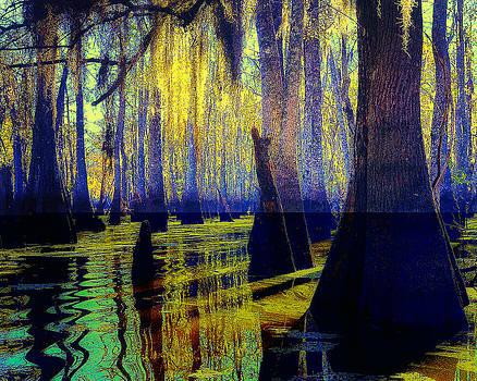 Bayou Dream by Gail Gates