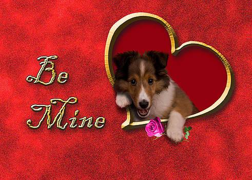 Jeanette K - Be Mine Sheltie