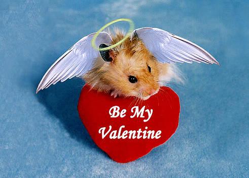 Jeanette K - Be My Valentine Angel Hamster