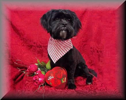 Be My Valentine by Rosalie Klidies