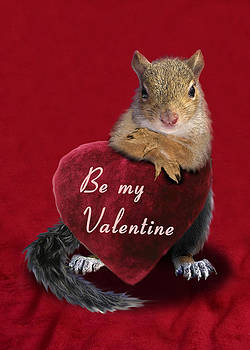 Jeanette K - Be My Valentine Squirrel