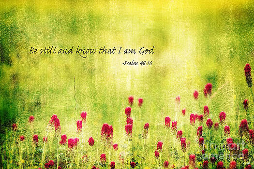 Scott Pellegrin - Be still and know that I am God