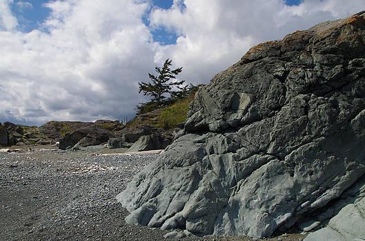 Marilyn Wilson - Beach at Fort Rodd Hill