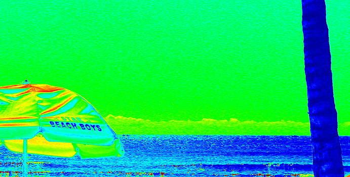 Beach Boys by Shara  Wright
