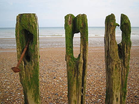 Beach Decay by Louise Morgan