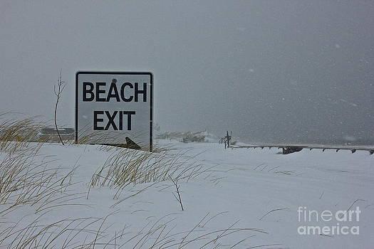 Amazing Jules - Beach Exit