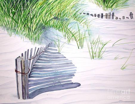 Beach Fences by Elizabeth  McRorie