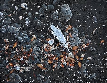 Beach floor. Flinders Vic by Elena Kolotusha
