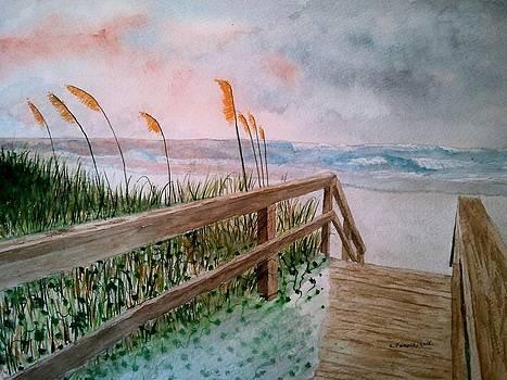 Beach Grass by B Kathleen Fannin