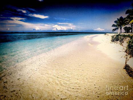 Beach in Paradise by Karen Lewis