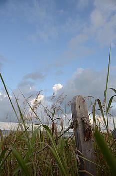 Beach Memories by Julie Cameron