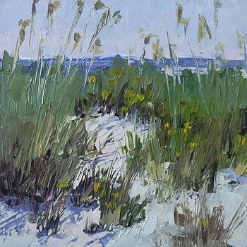 Beach Music by Barbara Benedict Jones