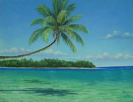 Beach of Fiji by Pravin  Sen