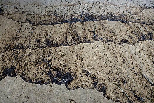 Roger Mullenhour - Beach Oil Seepage