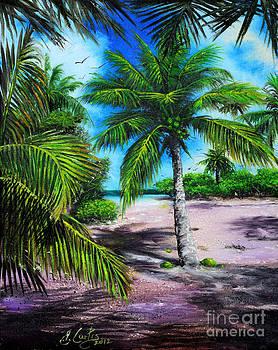 Beach Palm Tree by Earl Butch Curtis