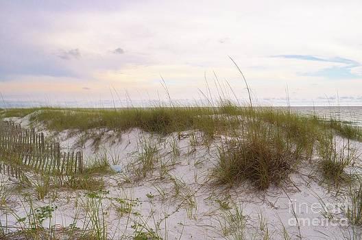 Beach Sand Dunes by Heather Beck