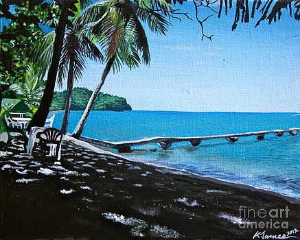Beach Shade by Kelvin James