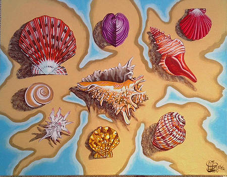 Beach Shells by Annette Jimerson