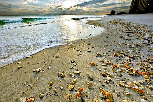 Beach Sunset and Seashells by Eszra Tanner