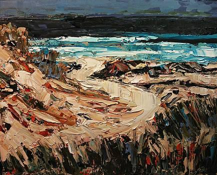 Beach Trail by Brian Simons