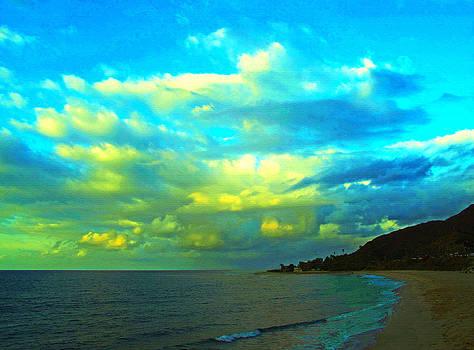 Beach Walker by Russell Jenkins