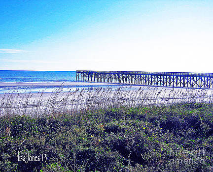 Beach Winter by Lisa Jones